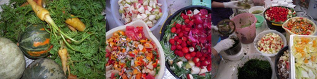 この日も美味しい有機野菜が届けられていました