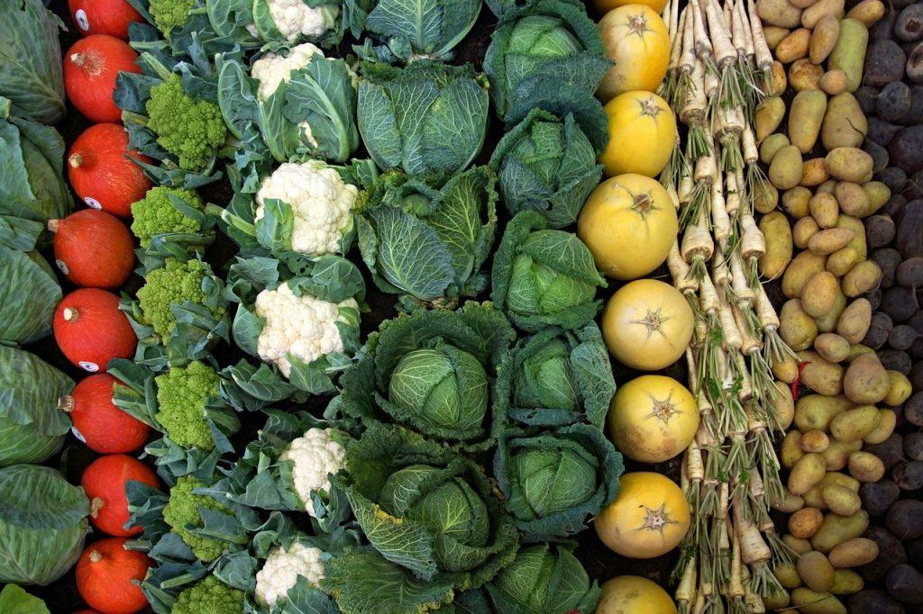 『自然百彩』の特徴:原材料(野菜類・果物類・豆類、穀物類・きのこ類、海藻類・ハーブ類)